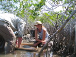 Left to right: Robert Twilley and Nicole Poret. Washing mangrove fine roots to set up a decomposition experiment, Taylor Slough