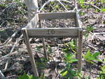 Litter basket installed in a mangrove forest to estimate litterfall productivity, Shark River Slough