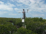 Xavier Zapata (FIU graduate student) installing a meteorological tower, Taylor Slough