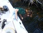 Oliva Pisani (FIU PhD student) collecting a water sample in Shark River