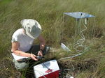 Making chamber measurements of net ecosystem exchange in a short-hydroperiod Everglades marsh (at TS/Ph-1b), Taylor Slough