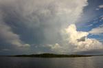 Oyster bay tree island