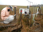 Graduate student David Lagomasino downloading surface water flow data at SRS-1