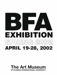 BFA Exhibition Spring 2002