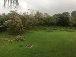 FIU MMC Campus After Hurricane Irma #2 by Florida International University