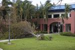 Hurricane Irma Damage on BBC Campus #2 by Florida International University